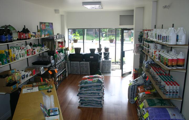 Store (Inside)