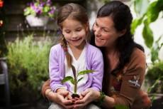 plant-nutrient-bg-3-500x333